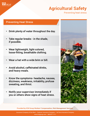 Beat The Heat Keep Cool Outdoors Policyholder Center