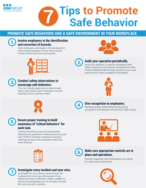Safely home everyone everyday influencing your culture of safety download pdf publicscrutiny Image collections