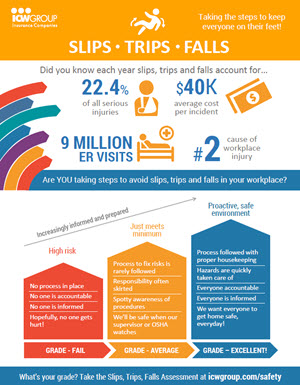 Slips, Trips Falls Did You Know Flyer.