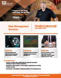 Risk Management Consultation Services PDF Thumbnail